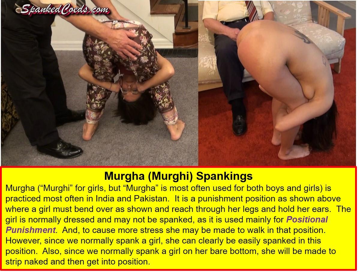 Murgha, 1